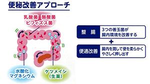 に 整腸剤 なる 便秘 どの整腸剤を飲んだらよいのか ~おすすめの整腸剤